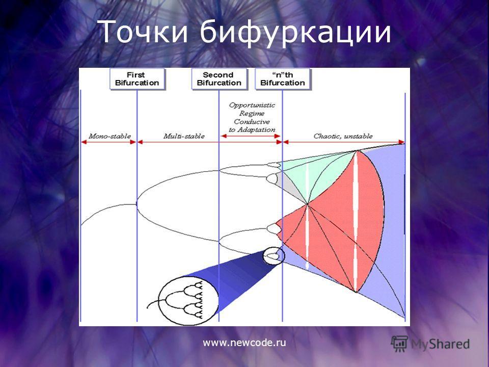 www.newcode.ru Точки бифуркации
