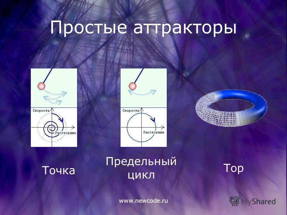 www.newcode.ru Простые аттракторы Точка Предельный цикл Тор