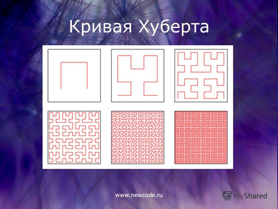 www.newcode.ru Кривая Хуберта