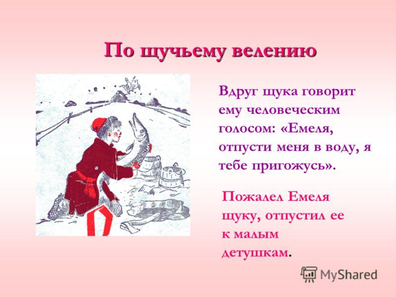 Вдруг щука говорит ему человеческим голосом: «Емеля, отпусти меня в воду, я тебе пригожусь». Пожалел Емеля щуку, отпустил ее к малым детушкам. По щучьему велению