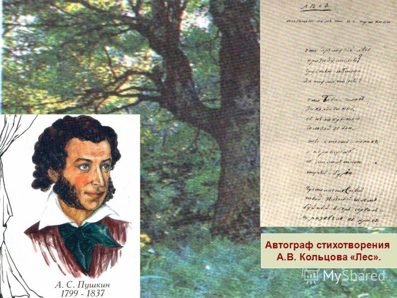 Автограф стихотворения А.В. Кольцова «Лес».