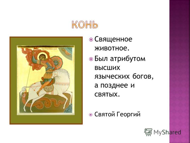 Священное животное. Был атрибутом высших языческих богов, а позднее и святых. Святой Георгий