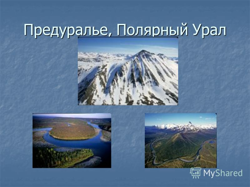 Предуралье, Полярный Урал