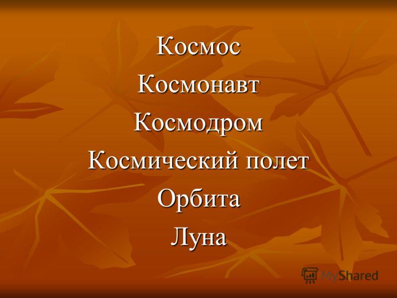 КосмосКосмонавтКосмодром Космический полет ОрбитаЛуна