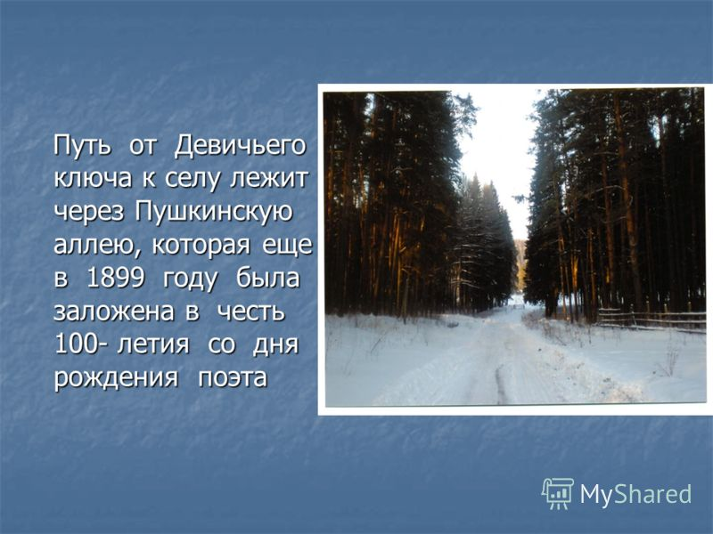 Путь от Девичьего ключа к селу лежит через Пушкинскую аллею, которая еще в 1899 году была заложена в честь 100- летия со дня рождения поэта Путь от Девичьего ключа к селу лежит через Пушкинскую аллею, которая еще в 1899 году была заложена в честь 100