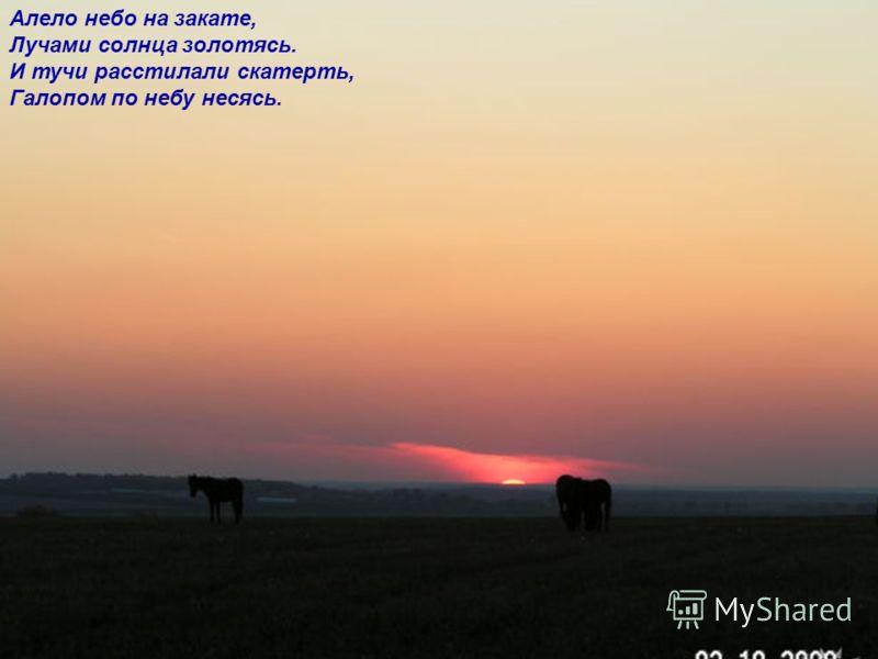 Алело небо на закате, Лучами солнца золотясь. И тучи расстилали скатерть, Галопом по небу несясь.
