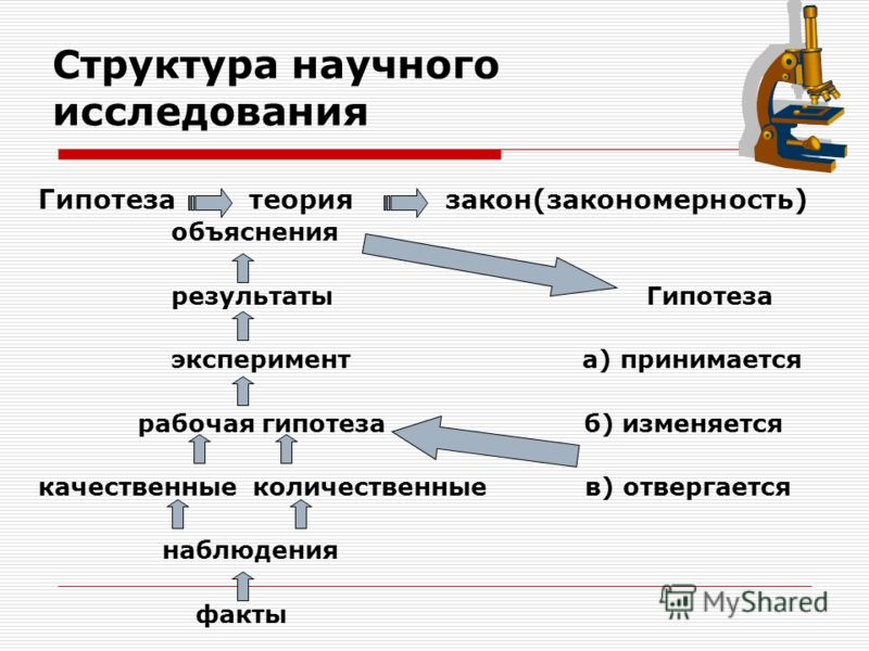 Структура научного исследования Гипотеза теория закон(закономерность) объяснения результаты Гипотеза эксперимент а) принимается рабочая гипотеза б) изменяется качественные количественные в) отвергается наблюдения факты