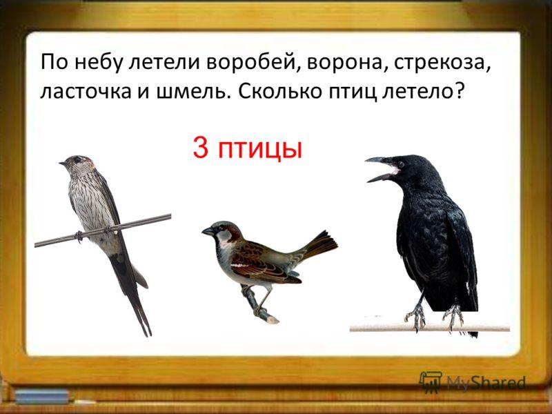 По небу летели воробей, ворона, стрекоза, ласточка и шмель. Сколько птиц летело? 3 птицы