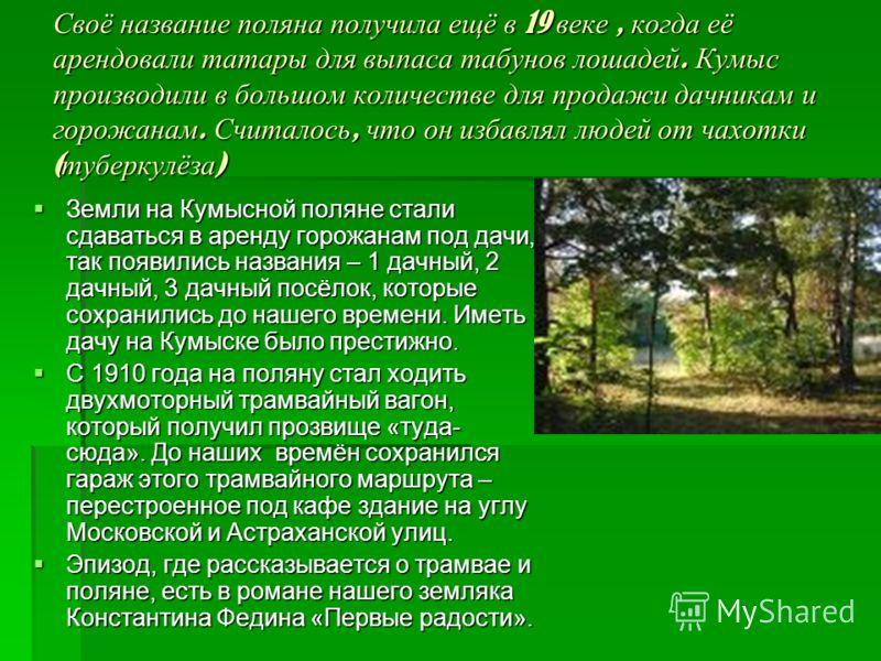 Своё название поляна получила ещё в 19 веке, когда её арендовали татары для выпаса табунов лошадей. Кумыс производили в большом количестве для продажи дачникам и горожанам. Считалось, что он избавлял людей от чахотки ( туберкулёза ) Земли на Кумысной
