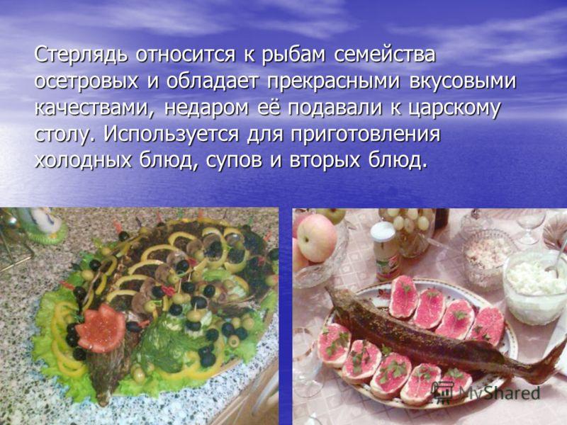 Стерлядь относится к рыбам семейства осетровых и обладает прекрасными вкусовыми качествами, недаром её подавали к царскому столу. Используется для приготовления холодных блюд, супов и вторых блюд.