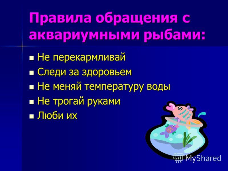 Правила обращения с аквариумными рыбами: Не перекармливай Не перекармливай Следи за здоровьем Следи за здоровьем Не меняй температуру воды Не меняй температуру воды Не трогай руками Не трогай руками Люби их Люби их