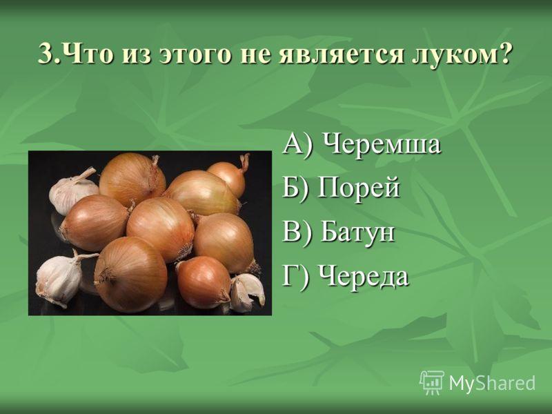 3.Что из этого не является луком? А) Черемша Б) Порей В) Батун Г) Череда