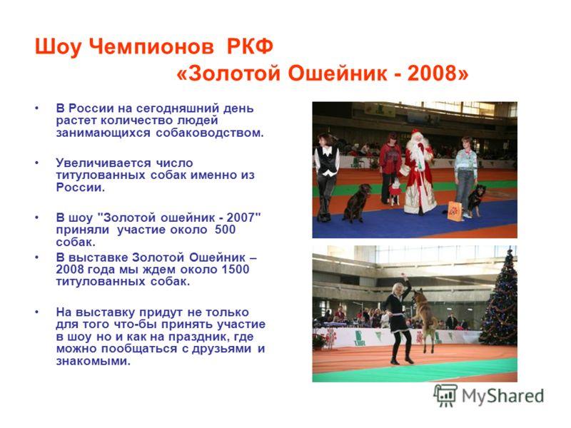 Шоу Чемпионов РКФ «Золотой Ошейник - 2008» В России на сегодняшний день растет количество людей занимающихся собаководством. Увеличивается число титулованных собак именно из России. В шоу