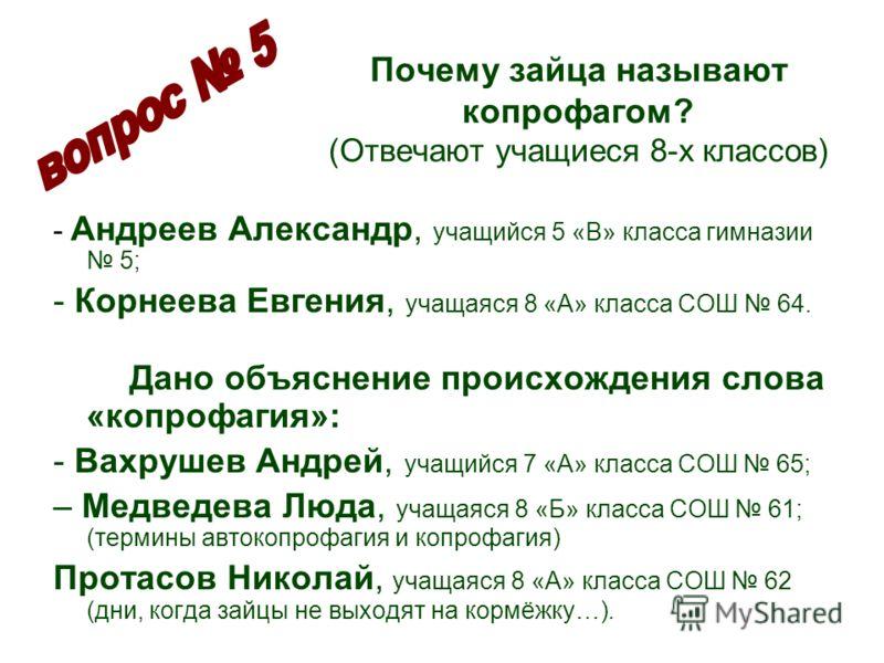 Почему зайца называют копрофагом? (Отвечают учащиеся 8-х классов) - Андреев Александр, учащийся 5 «В» класса гимназии 5; - Корнеева Евгения, учащаяся 8 «А» класса СОШ 64. Дано объяснение происхождения слова «копрофагия»: - Вахрушев Андрей, учащийся 7