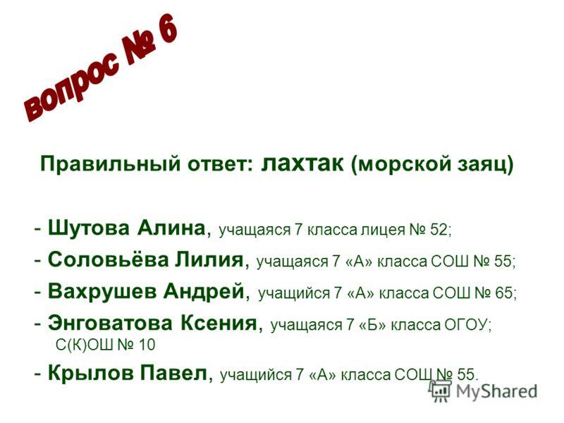 Правильный ответ: лахтак (морской заяц) - Шутова Алина, учащаяся 7 класса лицея 52; - Соловьёва Лилия, учащаяся 7 «А» класса СОШ 55; - Вахрушев Андрей, учащийся 7 «А» класса СОШ 65; - Энговатова Ксения, учащаяся 7 «Б» класса ОГОУ; С(К)ОШ 10 - Крылов