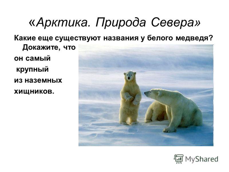 « Арктика. Природа Севера» Какие еще существуют названия у белого медведя? Докажите, что он самый крупный из наземных хищников.