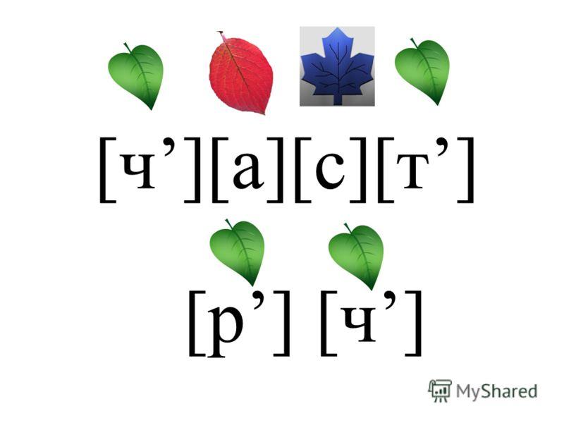[ч][а][с][т] [р] [ч]