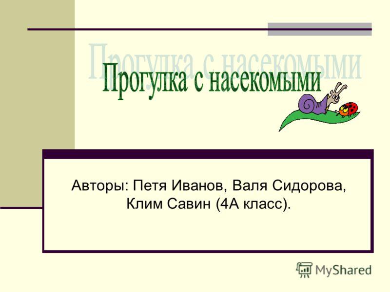 Авторы: Петя Иванов, Валя Сидорова, Клим Савин (4А класс).