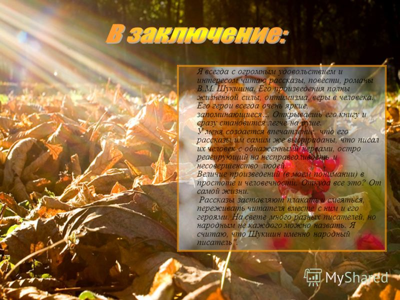 Я всегда с огромным удовольствием и интересом читаю рассказы, повести, романы В.М. Шукшина. Его произведения полны жизненной силы, оптимизма, веры в человека. Его герои всегда очень яркие, запоминающиеся… Открываешь его книгу и сразу становится легче
