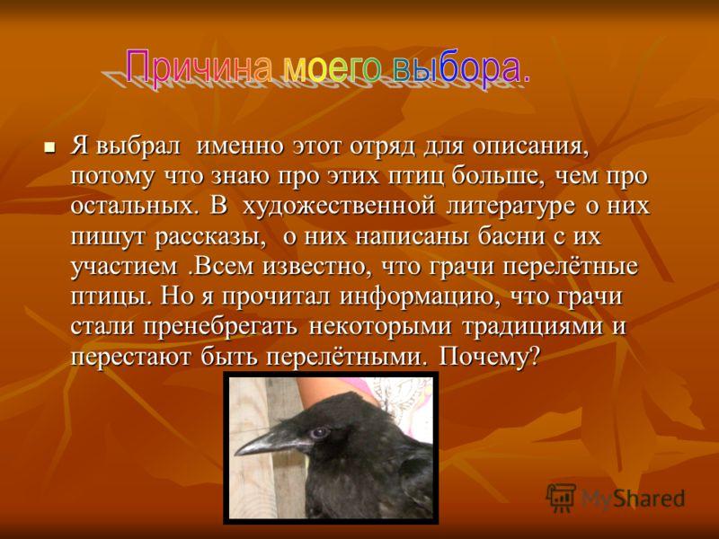 Я выбрал именно этот отряд для описания, потому что знаю про этих птиц больше, чем про остальных. В художественной литературе о них пишут рассказы, о них написаны басни с их участием.Всем известно, что грачи перелётные птицы. Но я прочитал информацию
