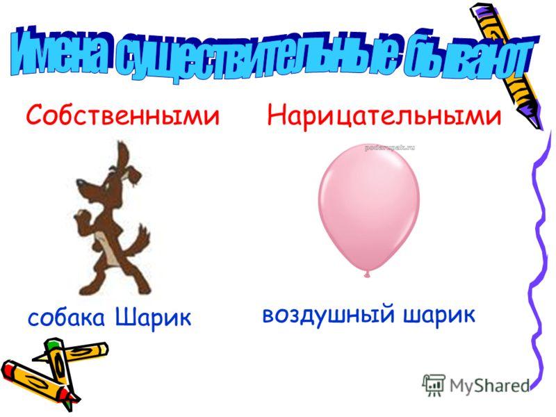 Собственными собака Шарик Нарицательными воздушный шарик