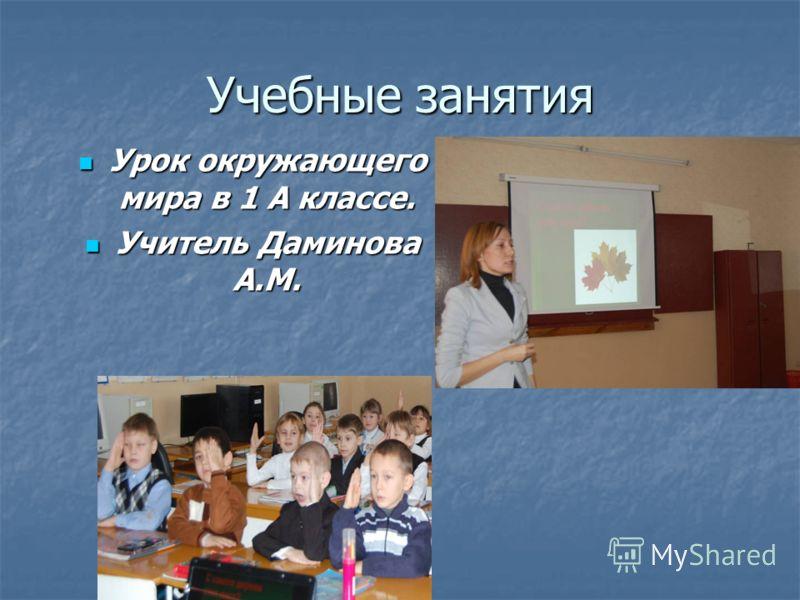 Учебные занятия Урок окружающего мира в 1 А классе. Урок окружающего мира в 1 А классе. Учитель Даминова А.М. Учитель Даминова А.М.