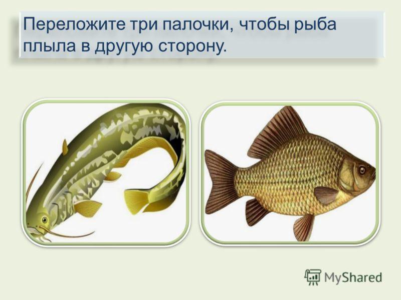 Переложите три палочки, чтобы рыба плыла в другую сторону.