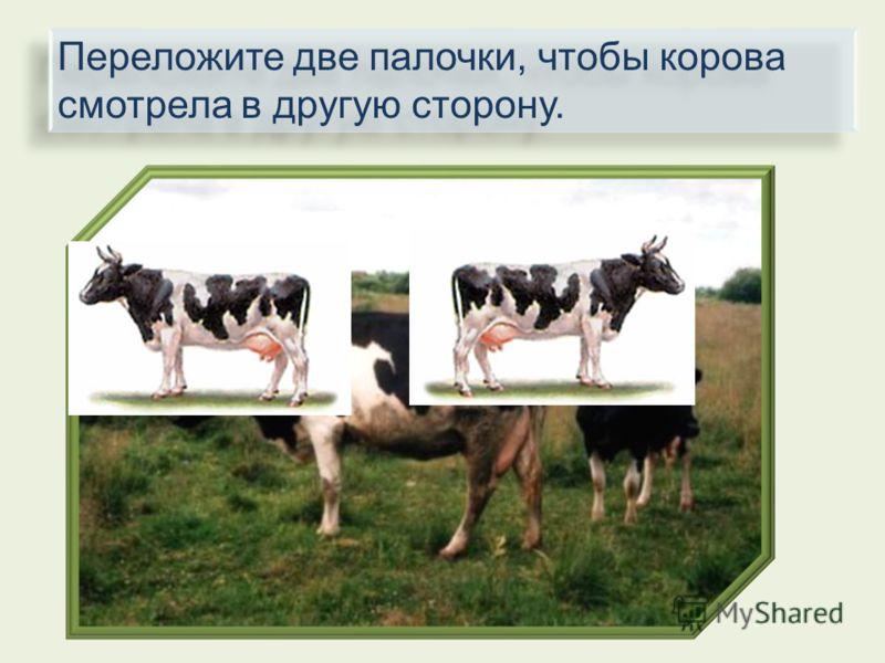 Переложите две палочки, чтобы корова смотрела в другую сторону.