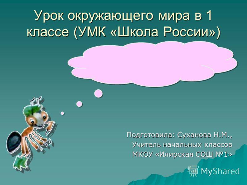 Учитель начальных классов Суханова Наталья Михайловна