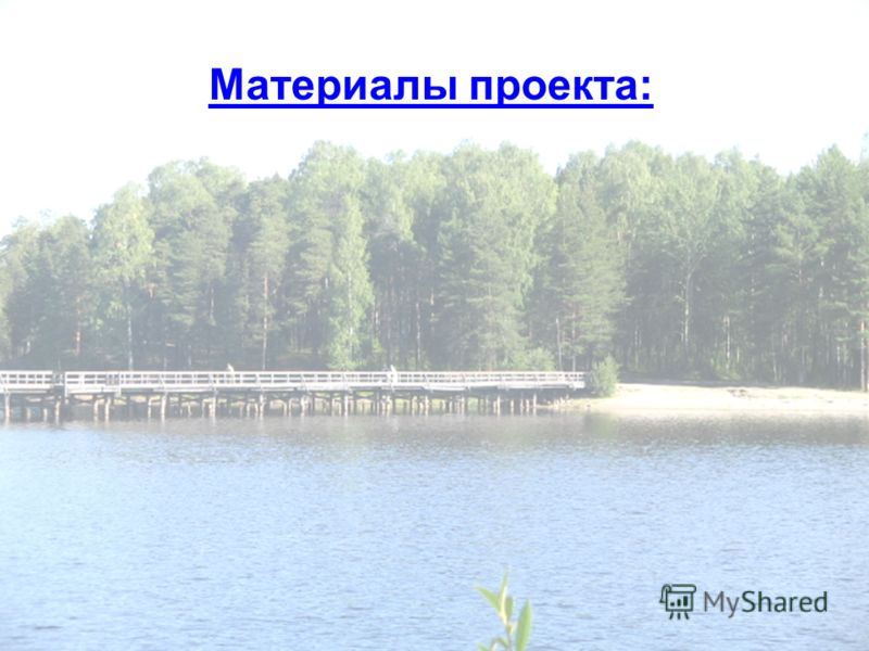 Материалы проекта: