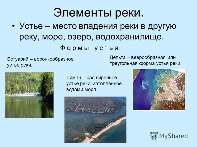 Элементы реки.