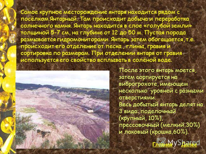 Самое крупное месторождение янтаря находится рядом с посёлком Янтарный. Там происходит добыча и переработка солнечного камня. Янтарь находится в слое «голубой земли» толщиной 5-7 см, на глубине от 12 до 50 м. Пустая порода размывается гидромониторами