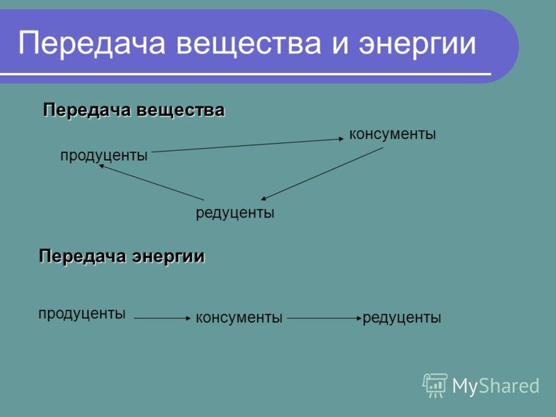 Передача вещества и энергии Передача вещества продуценты консументы редуценты Передача энергии продуценты консументыредуценты