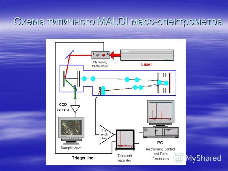 Схема типичного MALDI масс-