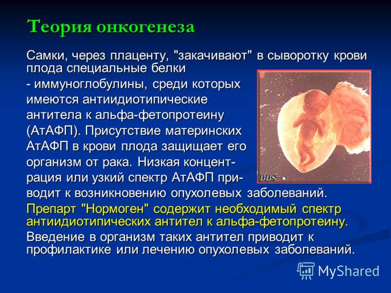Теория онкогенеза Самки, через плаценту,