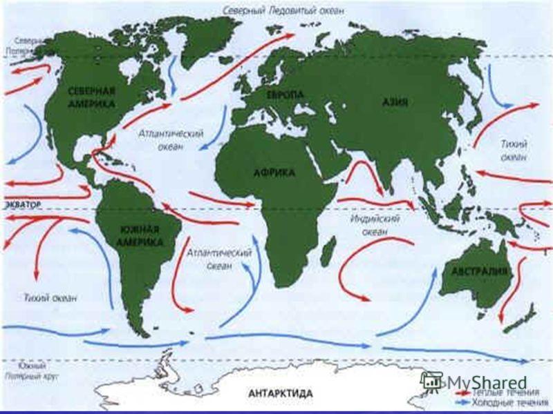 Презентация На Тему Северно Ледовитый Океан 7 Класс Скачать Бесплатно