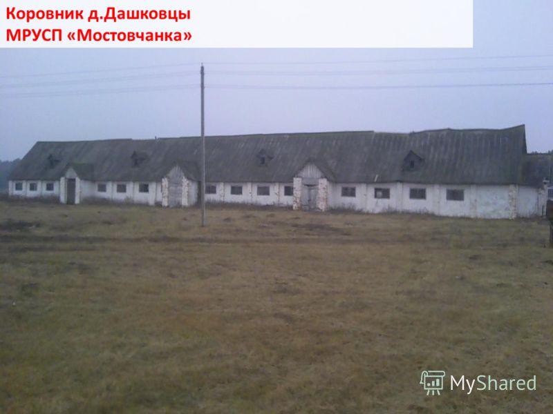 Коровник д.Дашковцы МРУСП «Мостовчанка»
