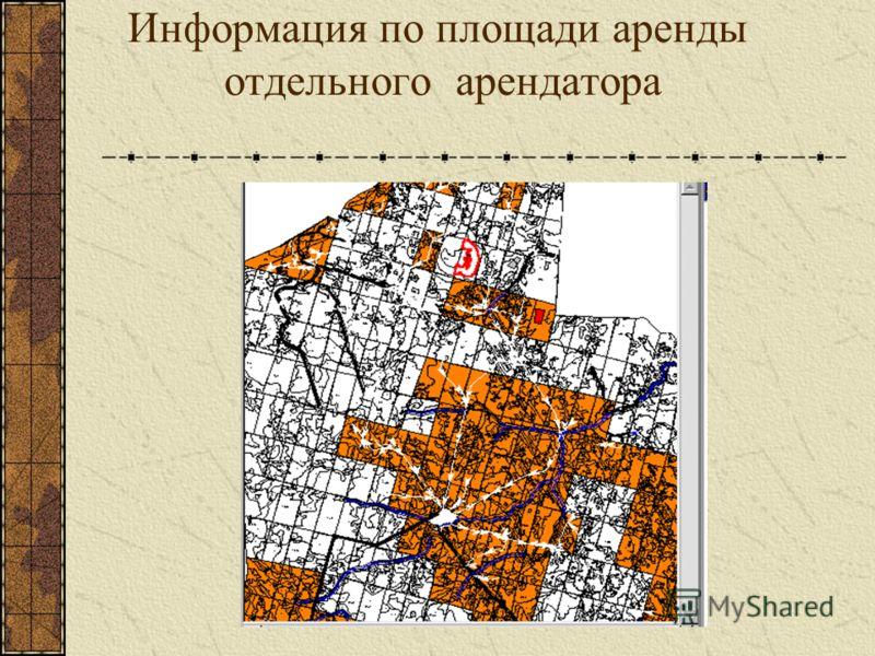 Информация по площади аренды отдельного арендатора