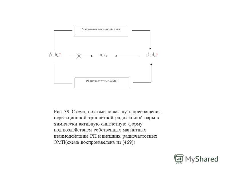 [R 1 R 2 ] T R 1 R 2 [R 1 R 2 ] S Радиочастотные ЭМП Магнитные взаимодействия Рис. 39. Схема, показывающая путь превращения нереакционной триплетной радикальной пары в химически активную синглетную форму под воздействием собственных магнитных взаимод