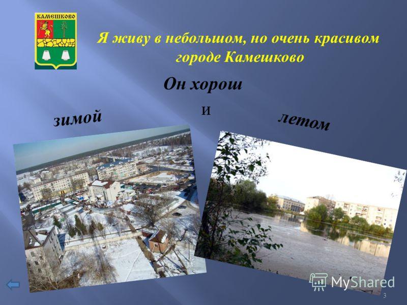 Я живу в небольшом, но очень красивом городе Камешково Он хорош зимой и летом 3