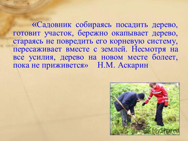 « Садовник собираясь посадить дерево, готовит участок, бережно окапывает дерево, стараясь не повредить его корневую систему, пересаживает вместе с землей. Несмотря на все усилия, дерево на новом месте болеет, пока не приживется» Н.М. Аскарин