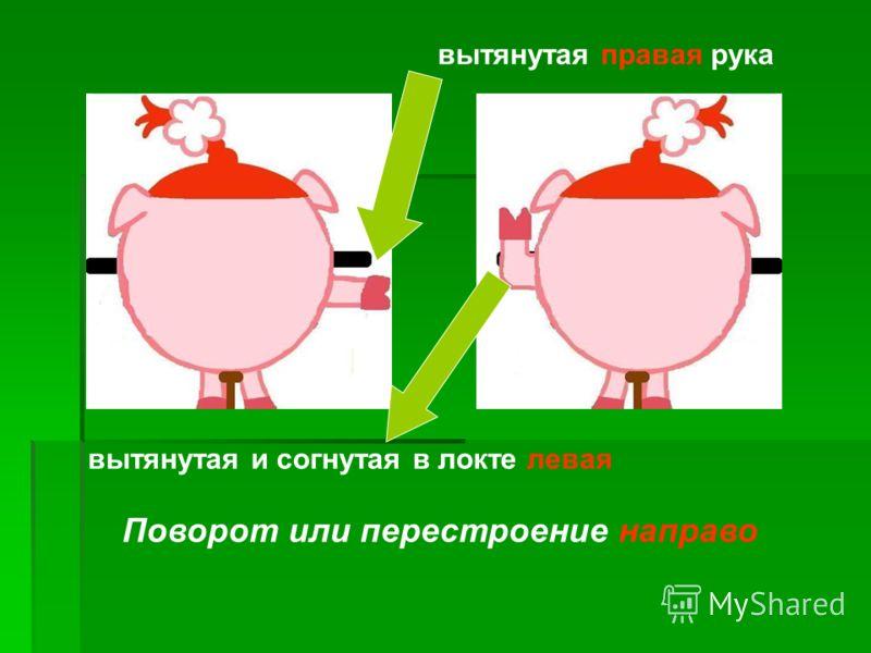 Поворот или перестроение направо вытянутая правая рука вытянутая и согнутая в локте левая