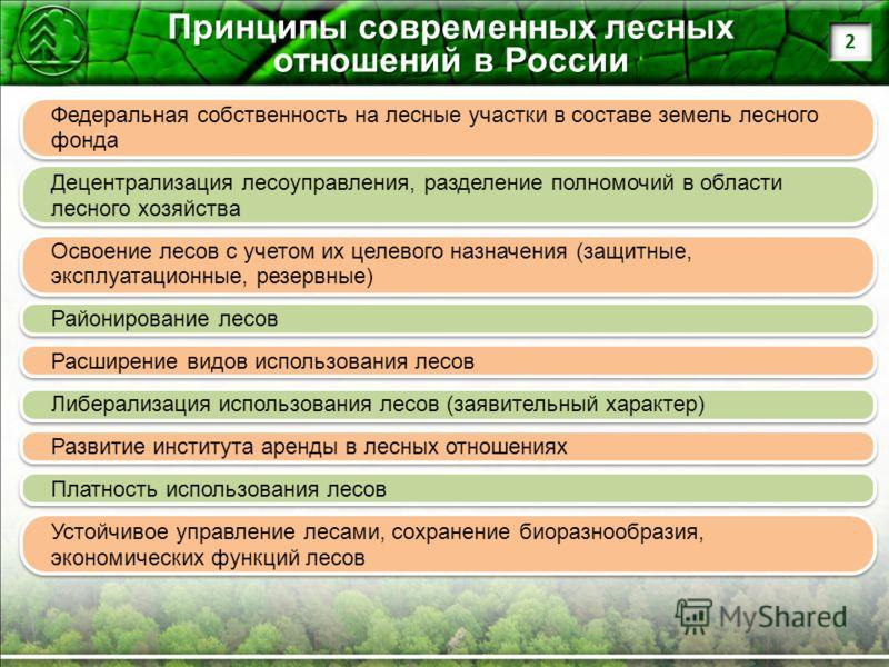 Принципы современных лесных отношений в России Федеральная собственность на лесные участки в составе земель лесного фонда Децентрализация лесоуправления, разделение полномочий в области лесного хозяйства Освоение лесов с учетом их целевого назначения