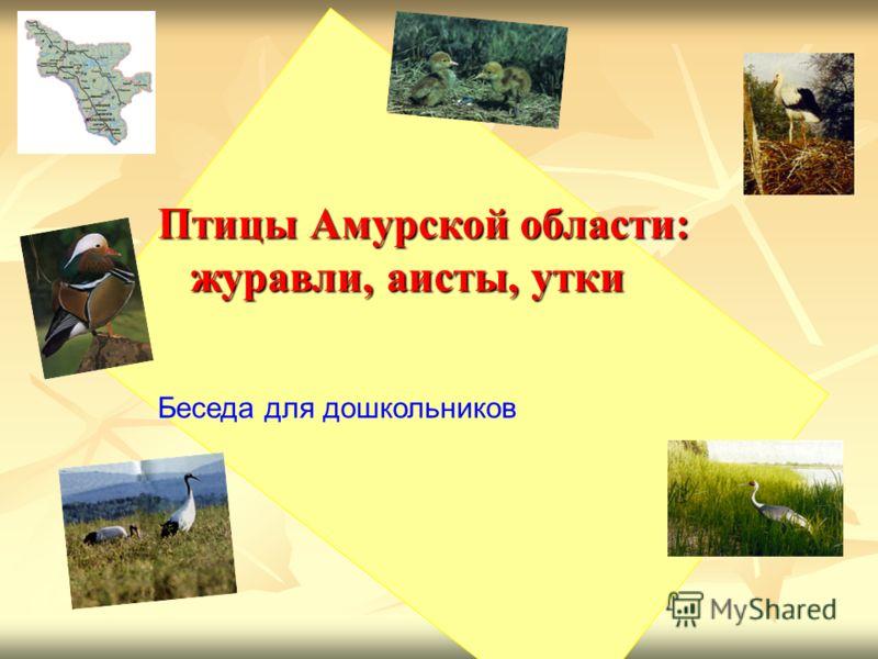 Птицы Амурской области: журавли, аисты, утки журавли, аисты, утки Беседа для дошкольников