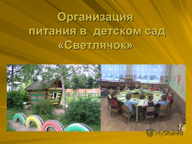 Организация питания в детском сад «Светлячок»