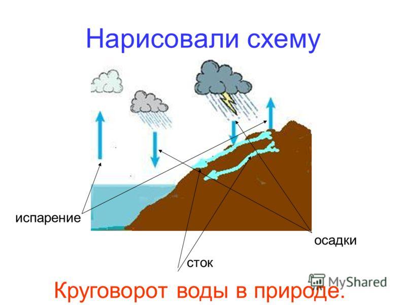 Нарисовали схему испарение сток осадки Круговорот воды в природе.