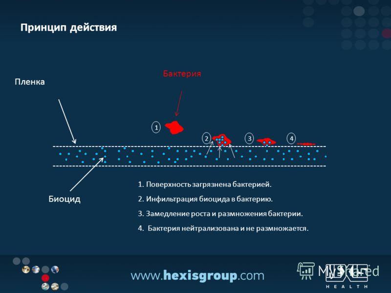 Биоцид Пленка Бактерия Принцип действия 1. Поверхность загрязнена бактерией. 2. Инфильтрация биоцида в бактерию. 3. Замедление роста и размножения бактерии. 4. Бактерия нейтрализована и не размножается. 2 1 34