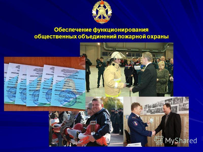 Обеспечение функционирования общественных объединений пожарной охраны