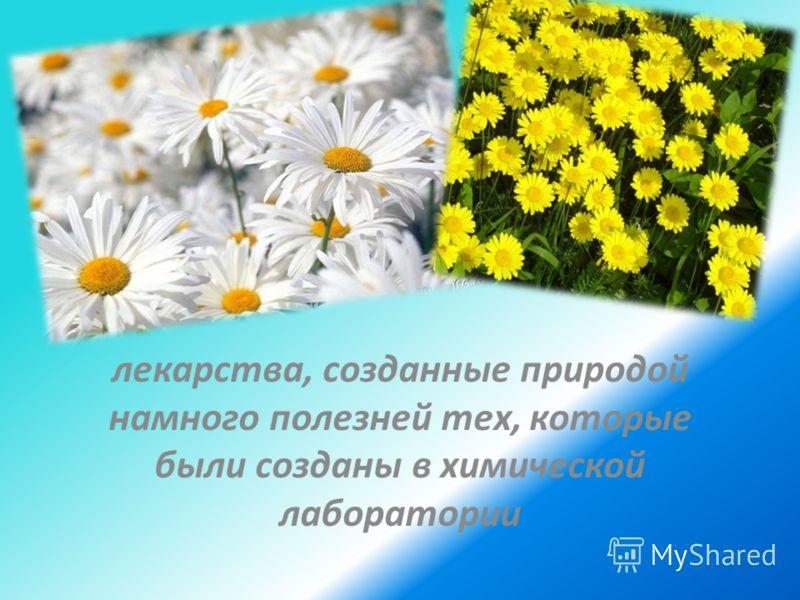 лекарства, созданные природой намного полезней тех, которые были созданы в химической лаборатории
