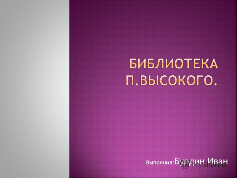 Выполнил: Бурдин Иван